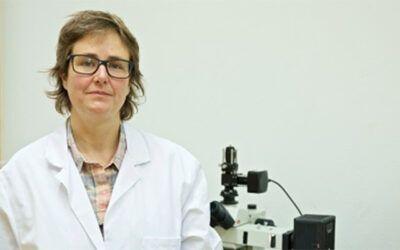 Hacia la medicina de precisión: modificar proteínas para conseguir biomarcadores