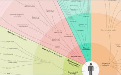 La salud digital y los determinantes de salud